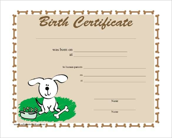 Birth Certificate sample 2641