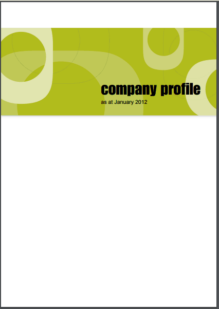 Company profile example 22.9494
