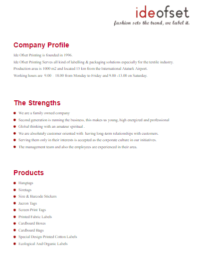 32 free company profile templates in word excel pdf company profile template 300 spiritdancerdesigns Images