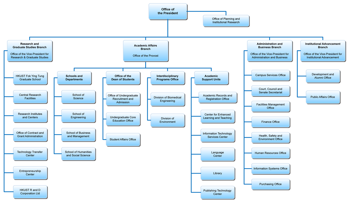 Organization Chart sample 3941