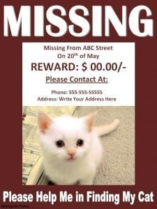 missing cat poster template 25744