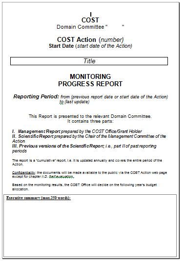progress report template 4941