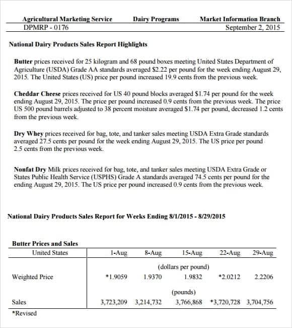 sales report sample 6.41