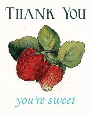 thank you card sample 341