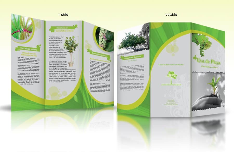 word brochure example 9741