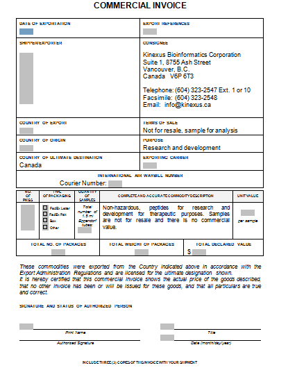 Commercial Invoice Template 29641