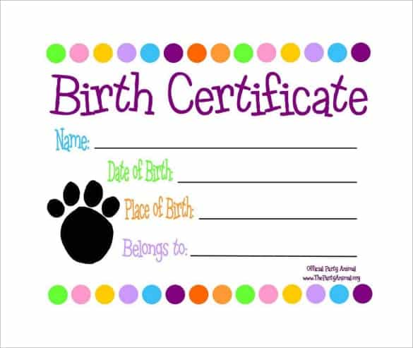 Birth Certificate sample 141