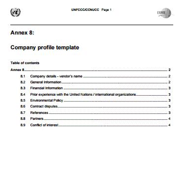 Company profile example 19.941