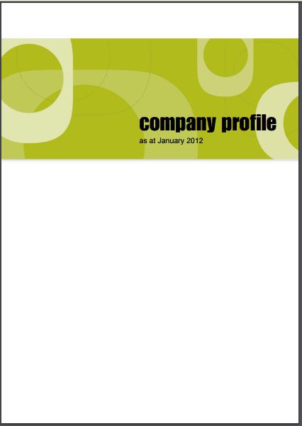 Company profile example 22.9494