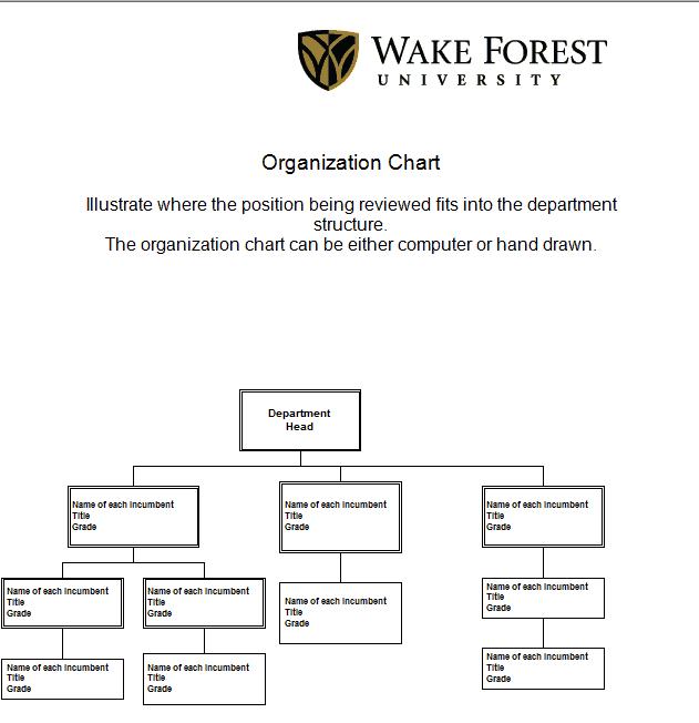 Organization Chart Templates 3641