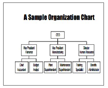 Organization Chart Templates 894