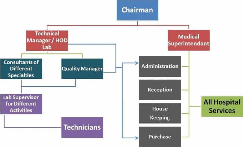 Organization Chart sample 24.9413