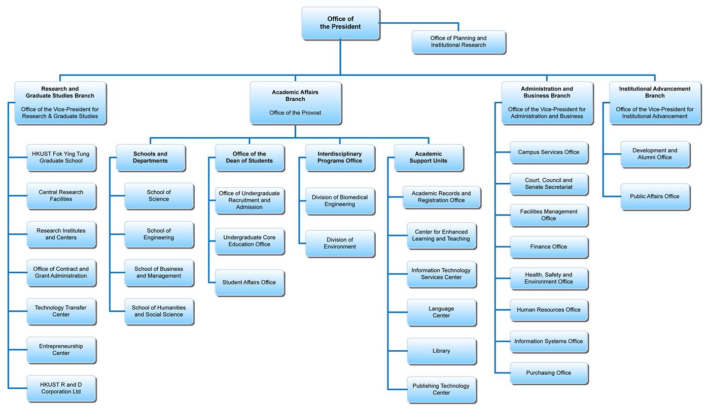 Organization Chart sample 3941