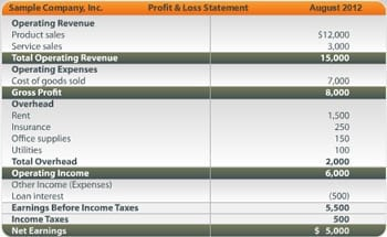 Profit and Loss Statement sample 15.41