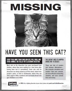 missing poster sample 4964