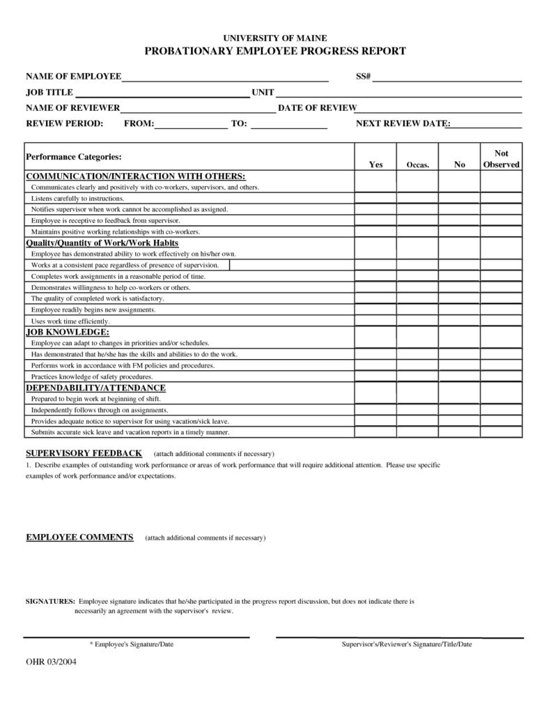 progress report sample 12.41