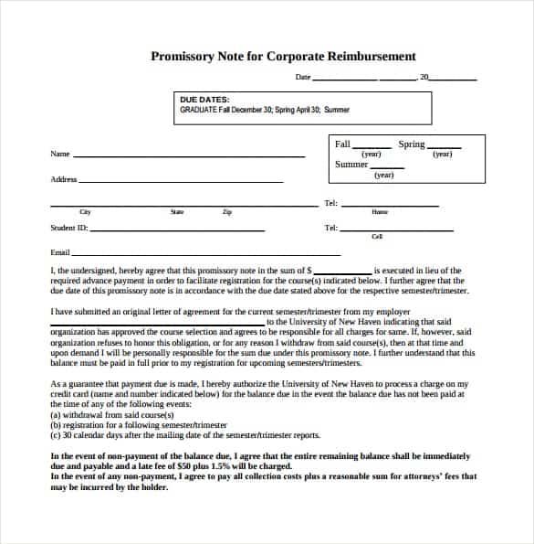 Promissory Note sample 17.41